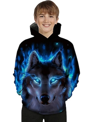 cheap Tops-Kids Toddler Boys' Hoodie & Sweatshirt Long Sleeve 3D Print Galaxy Wolf Animal Color Block Print Light Blue Blue Purple Children Tops Active Basic Novelty 2-13 Years