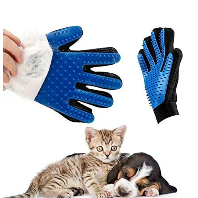 כפפות, חתול, חתול, כלב, שיער, דשדאנד, מברשת, כפפה, כפפה, לכלב, כלב, אצבע, ניקוי, כפפה, בעל חיים
