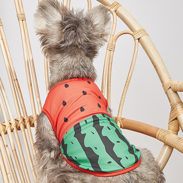 Dog Shirt / T-Shirt Vest Watermelon Basic Adorable Cute Dailywear Casual / Daily Dog Clothes Puppy Clothes Dog Outfits Breathable Red Costume for Girl and Boy Dog Cotton XS S M L XL XXL