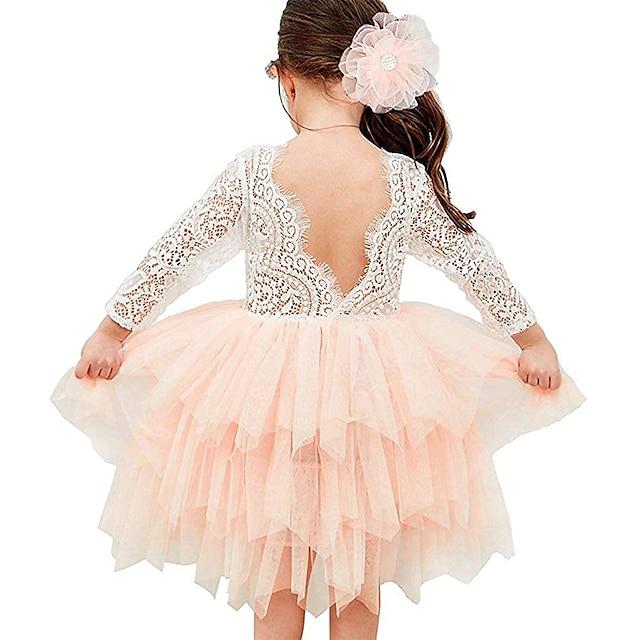 Kids Toddler Little Girls' Dress Color Block Flower Tutu Dress Mesh Lace Lace Trims Purple Blushing Pink White Asymmetrical 3/4 Length Sleeve Active Cute Dresses Children's Day Regular Fit