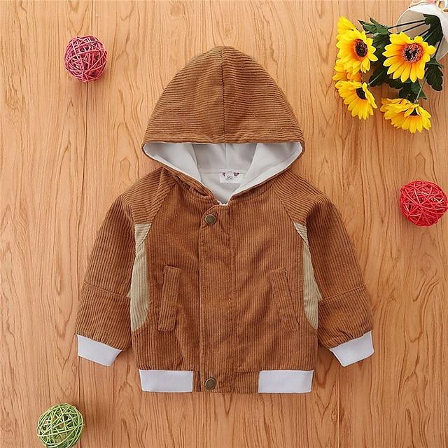 Toddler Girls' Coat Long Sleeve Purple Khaki Green Plain Pocket Patchwork Street Vacation Active Basic 2-6 Years