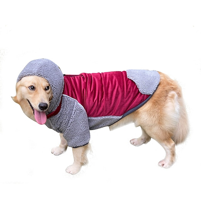 hooded detachable pet clothes for autumn and winter