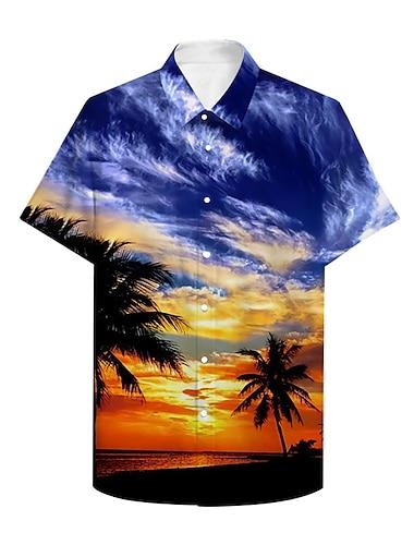 Pánské Košile 3D tisk Grafika 3D 3D tisk Tlačítko dolů Krátký rukáv Ležérní Topy Na běžné nošení Havajské Vodní modrá / Léto